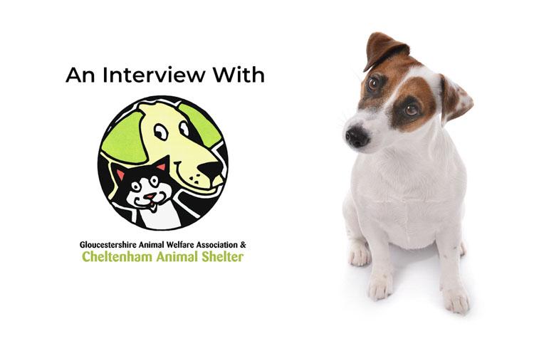Cheltenham Animal Shelter Cover Image - Small